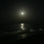 Plaja - Nisipurile de Aur